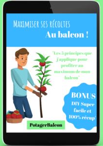 Comment augmenter ses récoltes